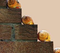 """scala a """"chiocciola"""" by carrara gualtiero @ http://adoroletuefoto.it"""