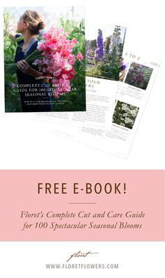 Floret's Complete Cut and Care Guide for 100 Spectacular Seasonal Blooms.  Free downloadable book.