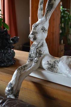Posing Hare