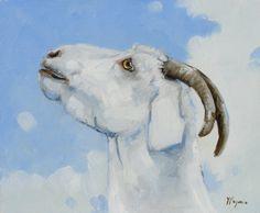 Portrait d'une chèvre