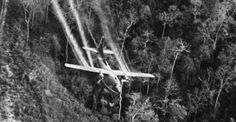 Vietnam - A cargo plane sprays Agent Orange over a forest in North Vietnam. Agent Orange was a blend of herbicides used to defoliate forests where Viet Cong forces were based.