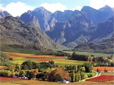 Stunning mountain views in Stellenbosch Landscape Pictures, Landscape Paintings, South Afrika, Out Of Africa, Africa Travel, Mountain View, Live, Landscape Photography, The Good Place