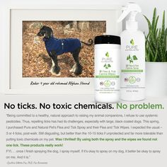 All Natural Pet Supplies by Pure and Natural Pet Afghan Hound, Flea And Tick, Ticks, My Animal, Fleas, Doggies, Your Pet, Pet Supplies, Essentials