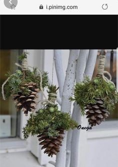Christmas Flowers, Natural Christmas, Noel Christmas, Rustic Christmas, Simple Christmas, Christmas Wreaths, Theme Noel, Outdoor Christmas Decorations, Xmas Crafts