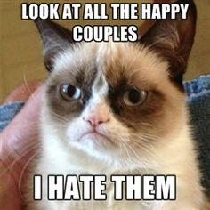 I feel your pain grumpy cat