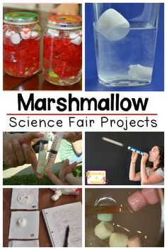 If you love marshmallows, youll love this list of marshmallow science fair projects that kids can enter into their school science fair! Science Experiments For Preschoolers, Science Projects For Kids, Stem Science, Kindergarten Science, Middle School Science, Teaching Science, Science For Kids, Science Ideas, Stem Projects