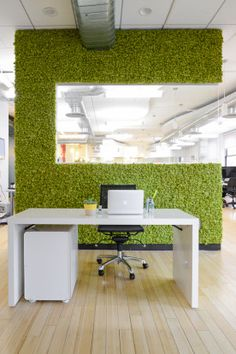 Nature in a workplace is shown to increase productivity and creativity