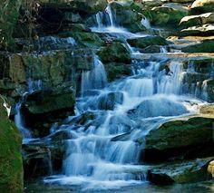 Moss Rock Preserve – Hoover, AL