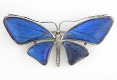 C. 1920s English Morpho Butterfly Wing Butterfly in Sterling | Etsy Morpho Butterfly, Blue Morpho, Butterfly Jewelry, Butterfly Wings, Insect Jewelry, Cute Charms, Locket Charms, Beautiful Butterflies, Gold Bands