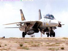 VF-31..... They were the last squadron to fly the F-14