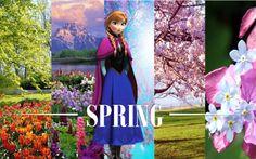 spring Anna frozen