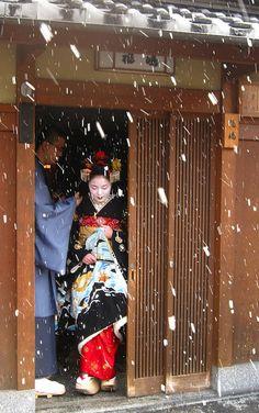 Geisha 芸者 - Maiko in snowy Kyoto, Japan ·«ǂ Japanese Geisha, Japanese Beauty, Japanese Art, Moe Manga, Winter In Japan, All About Japan, Go To Japan, Japan Japan, Memoirs Of A Geisha