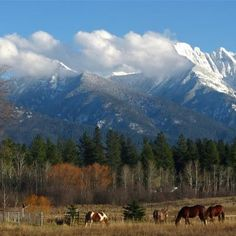 Mission  Mountains Montana.. how I miss my mountains! They are so beautiful this time of year!