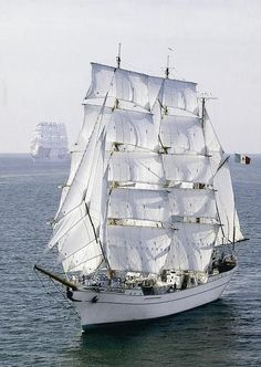 Cuauhtémoc was built in Bilbao, Spain in 1981 and originally called Celaya. Tall Ships, Bilbao, Old Sailing Ships, Small Sailboats, Whitewater Kayaking, Canoe Trip, Sail Away, Water Crafts, Yachts