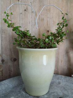 Upcycled Hangers become plant trellis-  Drahtbügel Upcycling Rankhilfe