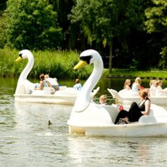 Paswijckpark Rotterdam