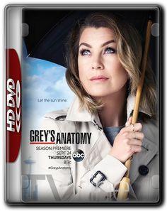 Greys Anatomy 12ª Temporada