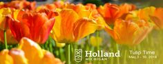 Check out the Tulip Festival in Holland, MI #microcation
