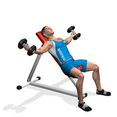 L'écarté aux haltères sur un banc incliné travaille de façon spécifique sur la partie extérieure/haute du grand pectoral, développant la symétrie et la forme du pectoral. La partie antérieure de l'épaule est impliquée en tant que muscle secondaire.