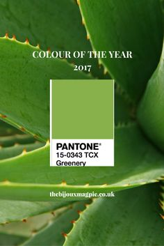 Welcome Pantone colour of the year 2017!!!  Think effervescent Peridot gemstones. So excited for the year ahead!!
