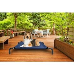 Shop for Furhaven Steel Frame Elevated Hammock Cot-style Raised Pet Bed. Free Shipping on orders over $45 at Overstock.com - Your Online Pet Beds Store! Get 5% in rewards with Club O! - 19134572