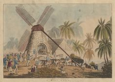 Sugar mill and mill yard