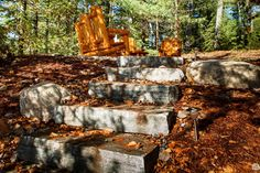 For over 40 years Cedarland Homes has been the builder of beautiful homes and cottages in the Parry Sound, Muskoka and Georgian Bay regions. Natural Landscaping, Custom Homes, Firewood, Beautiful Homes, Building A House, Fox, Cottage, Landscape, Future