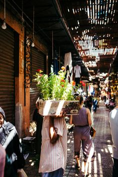 MEDINA FLOWER DELIVERY - MARRAKECH, MOROCCO - AFRICA, TRAVEL REPORTAGE by MANUEL PALLHUBER - WWW.MANUELPALLHUBER.COM