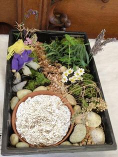 Seed tray garden ideas on pinterest 15 pins for Tray garden designs