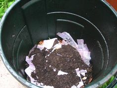 How To Start A Compost Bin In The City (With Little Money) – Gathering In Light