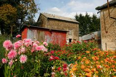 French Cottage Garden, Champagne, France by Nellie Windmill