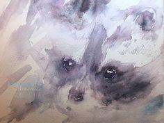 veredit - art©: little Raccoon - study