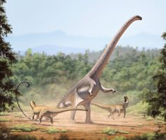 Barosaurs, a member of the sauropod family Diplodocidae, fending of two Allosaurus - Late Jurassic, Northe America (by FredtheDinosaurman)