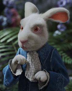 The White Rabbit - Tim Burton's 'Alice in Wonderland', ° Tim Burton, White Rabbit Alice In Wonderland, Alice In Wonderland Costume, Lewis Carroll, Animation Image Par Image, White Rabbit Costumes, Alice Book, White Rabbits, Adventures In Wonderland