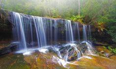 Falling Mist by Mark Lucey, via The middle falls, Somesby, Brisbane Waters National Park Brisbane Water, Oregon Waterfalls, Sunshine Coast, Mists, Landscape Photography, Natural Beauty, National Parks, Around The Worlds, Pictures