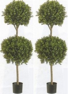 Two 56 Inch Artificial Boxwood Double Ball Topiary Trees Potted * Check out the image by visiting the link.