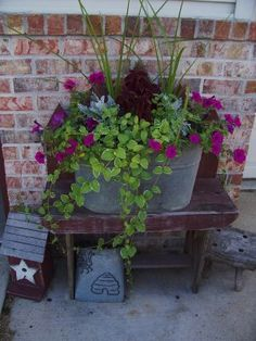 More easy-care plants for the container.