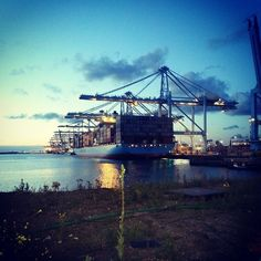 The first sunrays are coming in at APM Terminals
