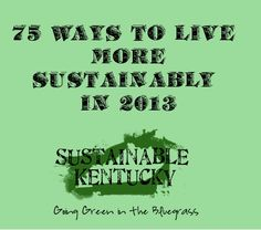 Some ideas to make life more sustainable this year!