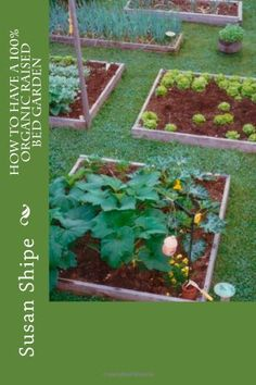 Book featured in my article: No-Dig Gardening and Raised Beds - Good for the Soil and Easy for You