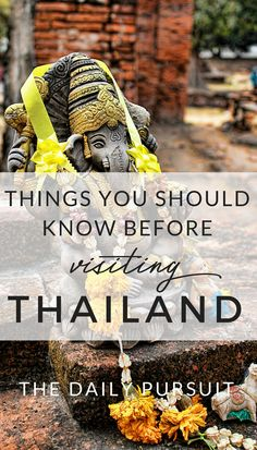 Things you Should know before Visiting Thailand. What you should and shouldn't do in Thailand to respect the culture. thedailypursuit.com