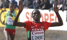 Kenyan athletes' official Noah Ngeny quits post over doping crisis • Official says not enough is being done over drug taking • More than 40 Kenyans banned for doping in past three years