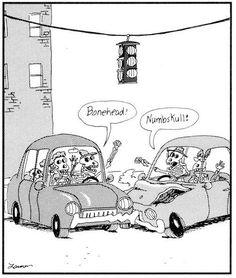 gary larson :-) The Far side - accident