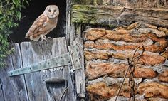 """New Original Painting by Alan M Hunt - Title """"Heading Out for Dinner"""" Barn Owl - Acrlyic on Canvas - Size 24"""" x 36"""".  To see more incredible bird of prey paintings by Alan visit this link (6) Tumblr British Wildlife, Wildlife Art, Paintings For Sale, Original Paintings, Peregrine Falcon, Birds Of Prey, Art Blog, Canvas Size, Owl"""