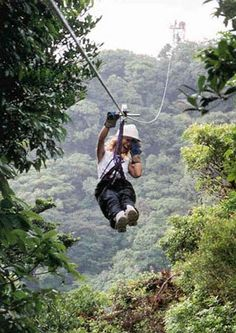 ziplining. Looks horribly scary, but pretty fantastic at the same time.