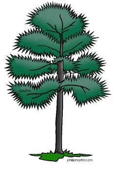 CLIP ART TREES FOR ANIMATED POWER POINTS on Pinterest   22 ...