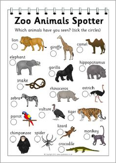 Zoo animals spotter sheet from sparkle box. Use with Apologia Zoology, field trip idea, #homeschool