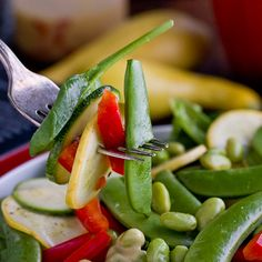 Raw summer vegetables with Dijon vinaigrette.     (Also could stir-fry the works - with cabbage or bok choy - to bring out the squash etc., and add the vinaigrette after...?)