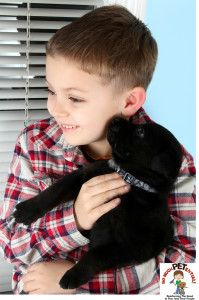 April & May 2013 #Cincinnati #dog bite prevention programs for #kids