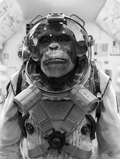 Space ape, created by Maarten Verhoeven using Zbrush.